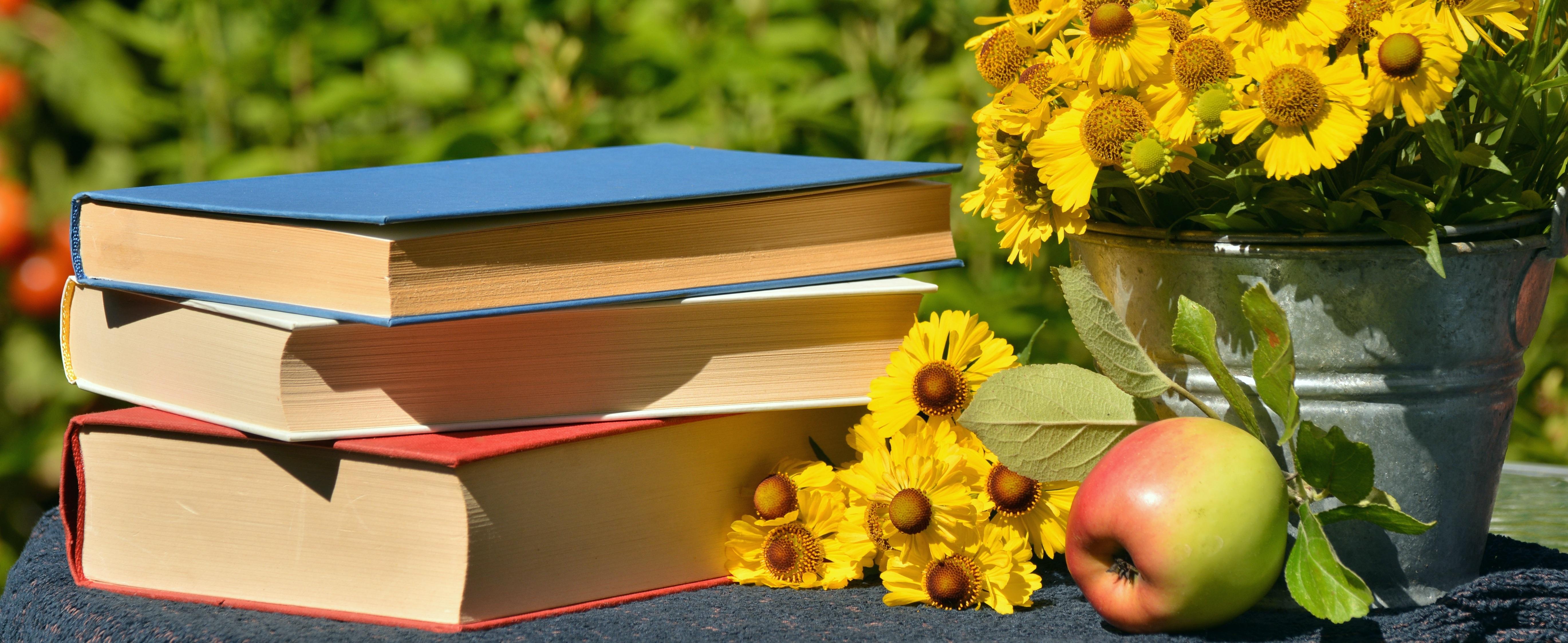 Bücher_Blumen WebnewsBlog Beitrag Katrin von Mengden Breucker